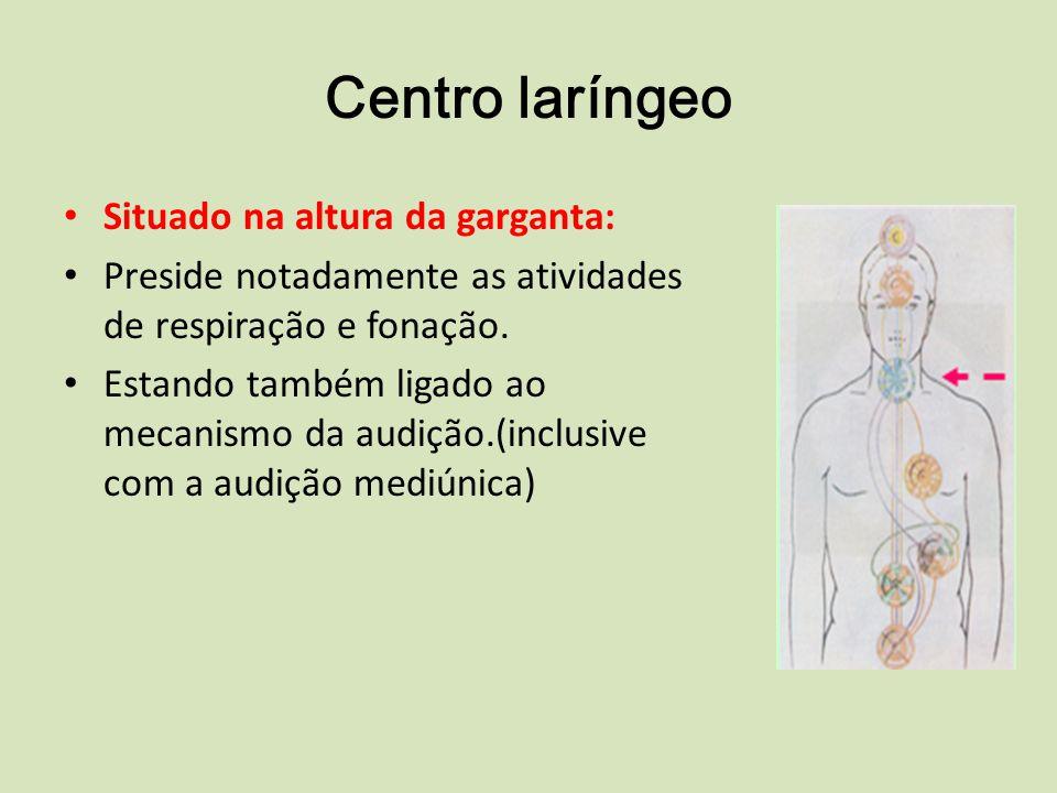 Centro laríngeo Situado na altura da garganta: Preside notadamente as atividades de respiração e fonação.