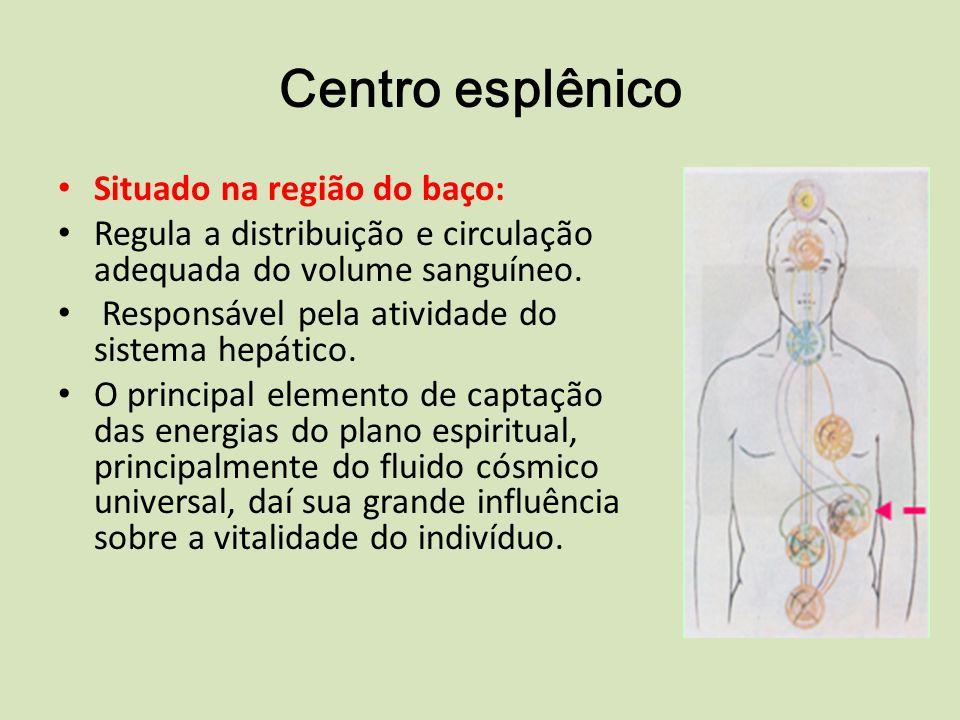 Centro esplênico Situado na região do baço: Regula a distribuição e circulação adequada do volume sanguíneo.