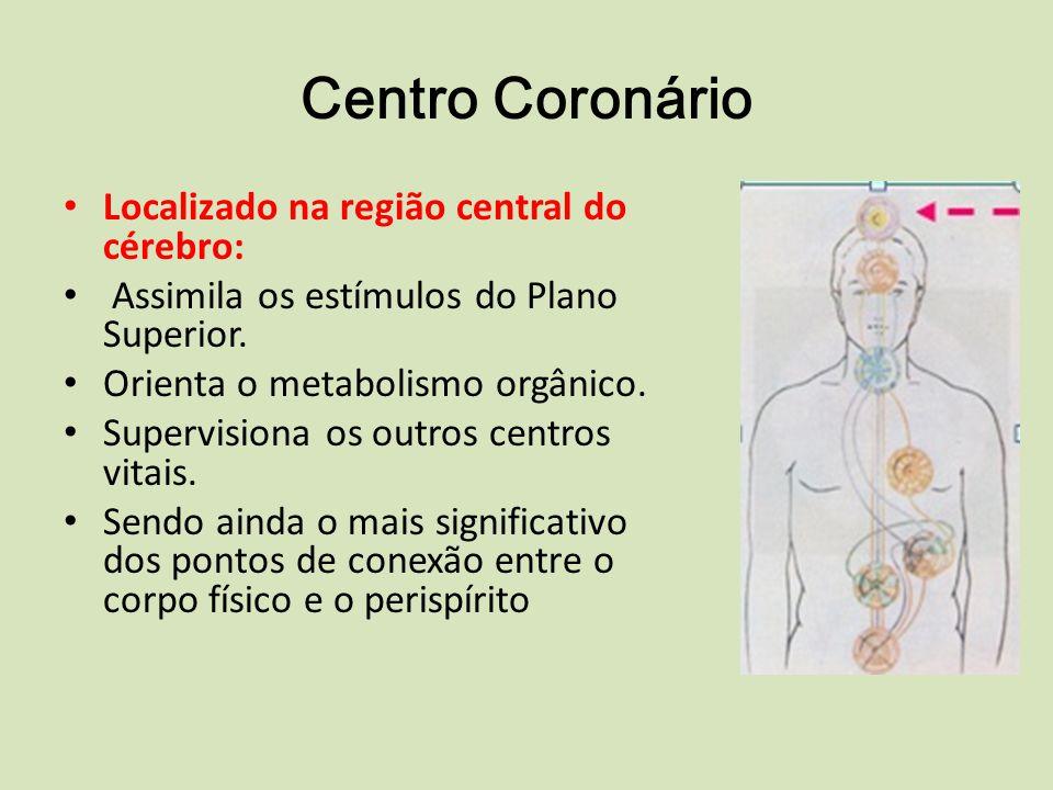 Centro Coronário Localizado na região central do cérebro: Assimila os estímulos do Plano Superior.