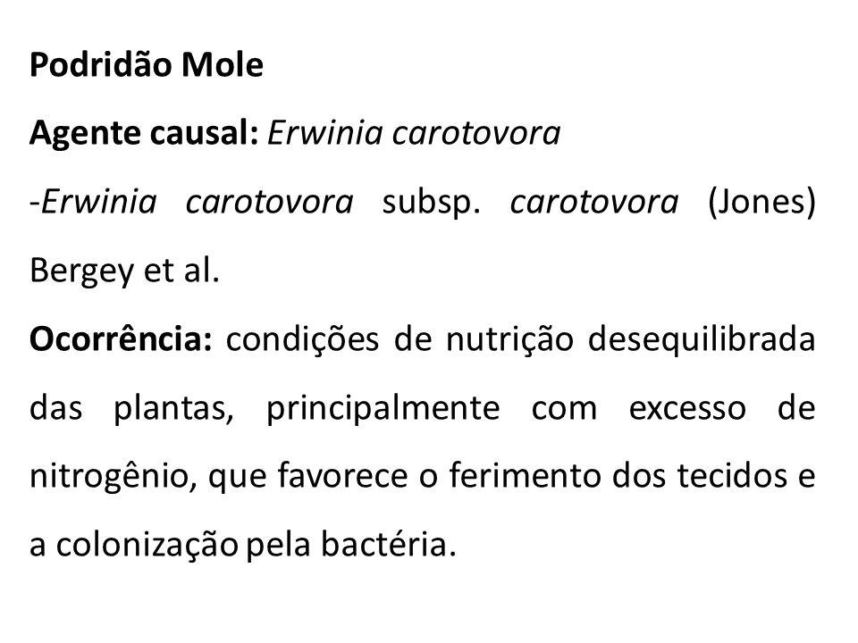 Podridão Mole Agente causal: Erwinia carotovora -Erwinia carotovora subsp. carotovora (Jones) Bergey et al. Ocorrência: condições de nutrição desequil