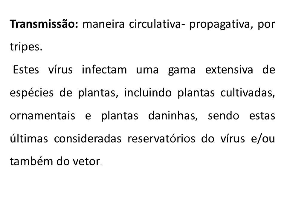 Transmissão: maneira circulativa- propagativa, por tripes. Estes vírus infectam uma gama extensiva de espécies de plantas, incluindo plantas cultivada