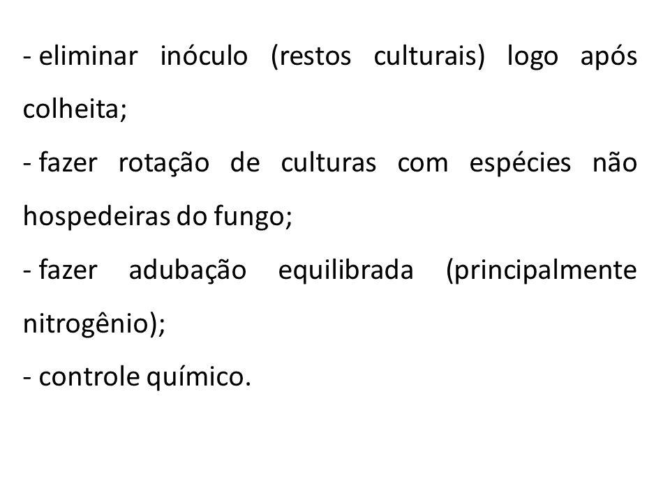 - eliminar inóculo (restos culturais) logo após colheita; - fazer rotação de culturas com espécies não hospedeiras do fungo; - fazer adubação equilibr