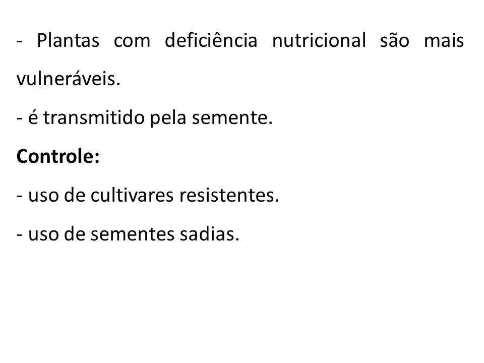 - Plantas com deficiência nutricional são mais vulneráveis. - é transmitido pela semente. Controle: - uso de cultivares resistentes. - uso de sementes