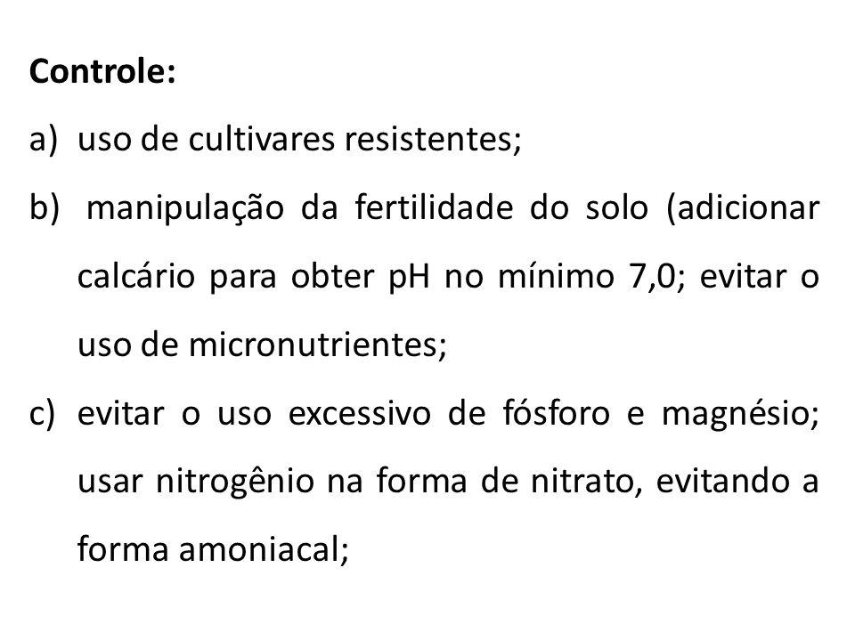 Controle: a)uso de cultivares resistentes; b) manipulação da fertilidade do solo (adicionar calcário para obter pH no mínimo 7,0; evitar o uso de micr