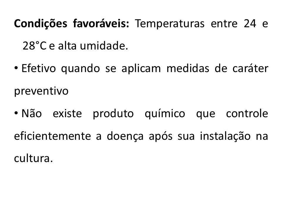 Condições favoráveis: Temperaturas entre 24 e 28°C e alta umidade. Efetivo quando se aplicam medidas de caráter preventivo Não existe produto químico