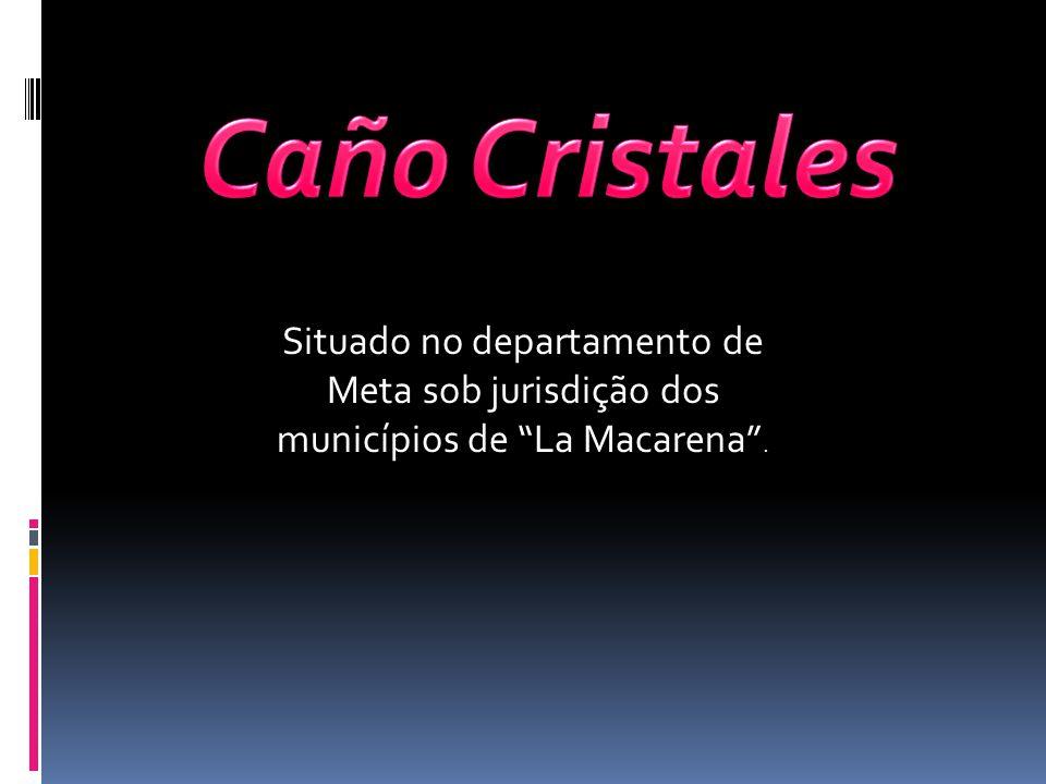 Situado no departamento de Meta sob jurisdição dos municípios de La Macarena.