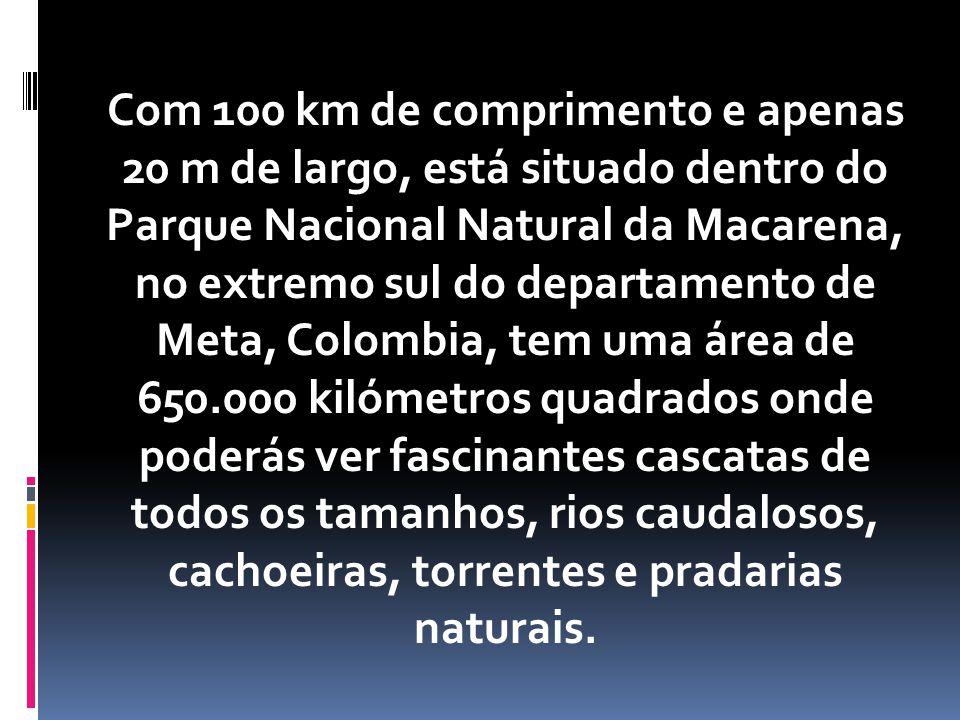Com 100 km de comprimento e apenas 20 m de largo, está situado dentro do Parque Nacional Natural da Macarena, no extremo sul do departamento de Meta, Colombia, tem uma área de 650.000 kilómetros quadrados onde poderás ver fascinantes cascatas de todos os tamanhos, rios caudalosos, cachoeiras, torrentes e pradarias naturais.