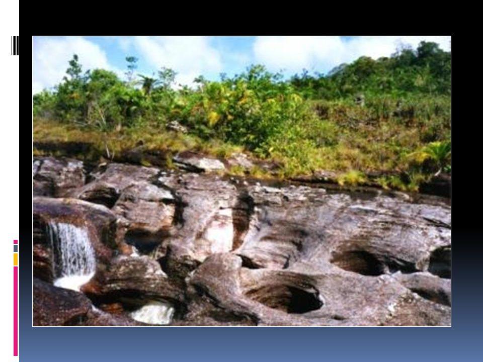 O rio foi declarado Património Biológico da Humanidade.