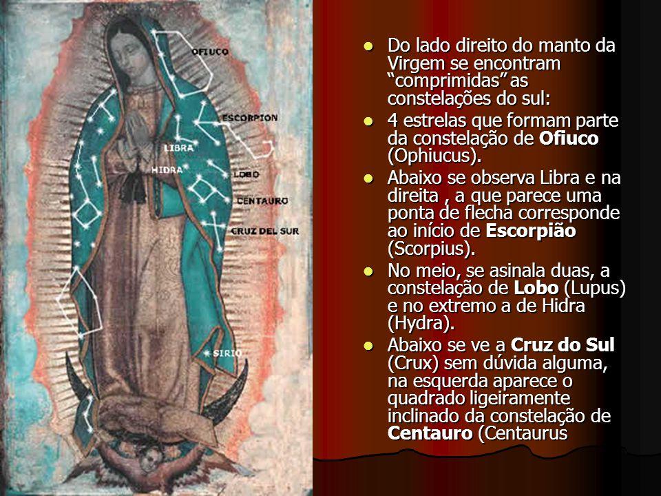 8. As estrelas visíveis no Manto de Maria refletem a exata configuração e posição que se apresentava o céu do México no dia em que aconteceu o milagre