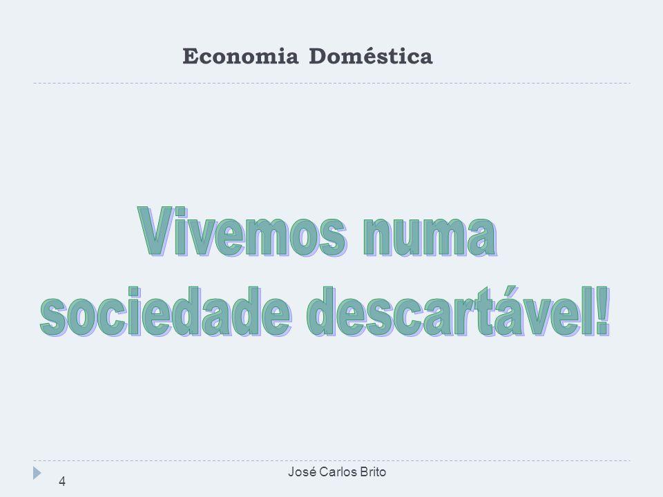 Economia Doméstica José Carlos Brito 4