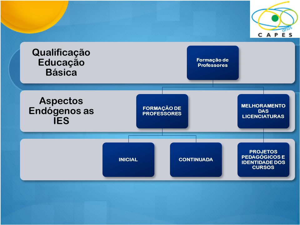 Aspectos Endógenos as IES Qualificação Educação Básica Formação de Professores FORMAÇÃO DE PROFESSORES INICIALCONTINUADA MELHORAMENTO DAS LICENCIATURA