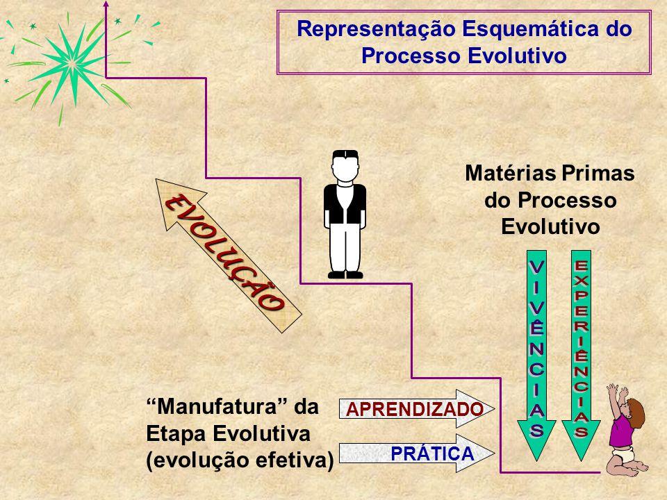 APRENDIZADOPRÁTICA Matérias Primas do Processo Evolutivo Manufatura da Etapa Evolutiva (evolução efetiva) EVOLUÇÃO Representação Esquemática do Proces