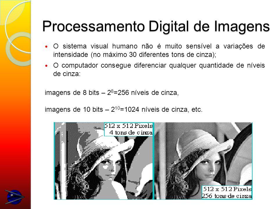 Processamento Digital de Imagens O sistema visual humano não é muito sensível a variações de intensidade (no máximo 30 diferentes tons de cinza); O computador consegue diferenciar qualquer quantidade de níveis de cinza: imagens de 8 bits – 2 8 =256 níveis de cinza, imagens de 10 bits – 2 10 =1024 níveis de cinza, etc.