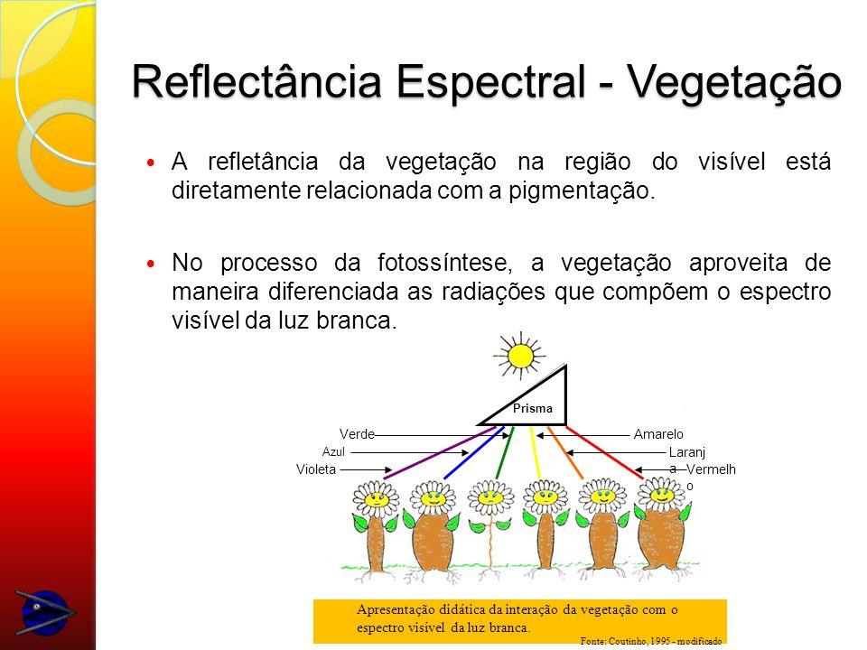 Reflectância Espectral - Vegetação A refletância da vegetação na região do visível está diretamente relacionada com a pigmentação.