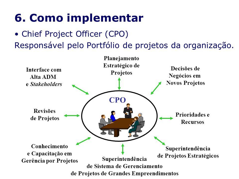 6. Como implementar Chief Project Officer (CPO) Responsável pelo Portfólio de projetos da organização. Conhecimento e Capacitação em Gerência por Proj