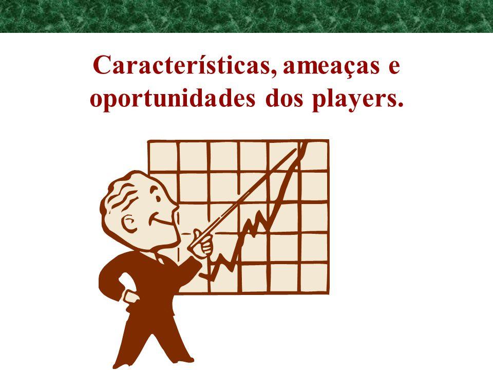 Programa de Requalificação Empresarial Características, ameaças e oportunidades dos players.