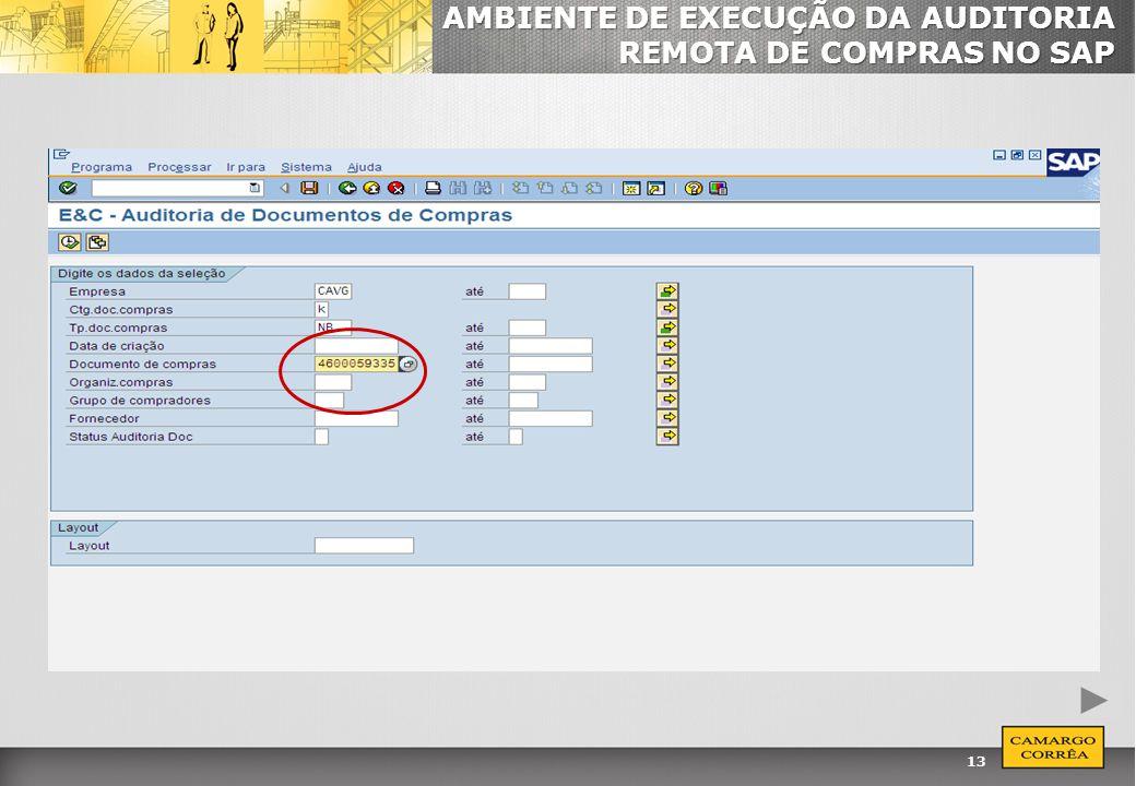 13 AMBIENTE DE EXECUÇÃO DA AUDITORIA REMOTA DE COMPRAS NO SAP