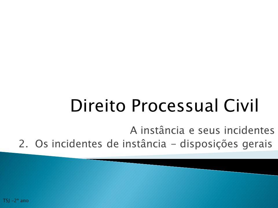 Direito Processual Civil A instância e seus incidentes 2. Os incidentes de instância - disposições gerais TSJ -2º ano