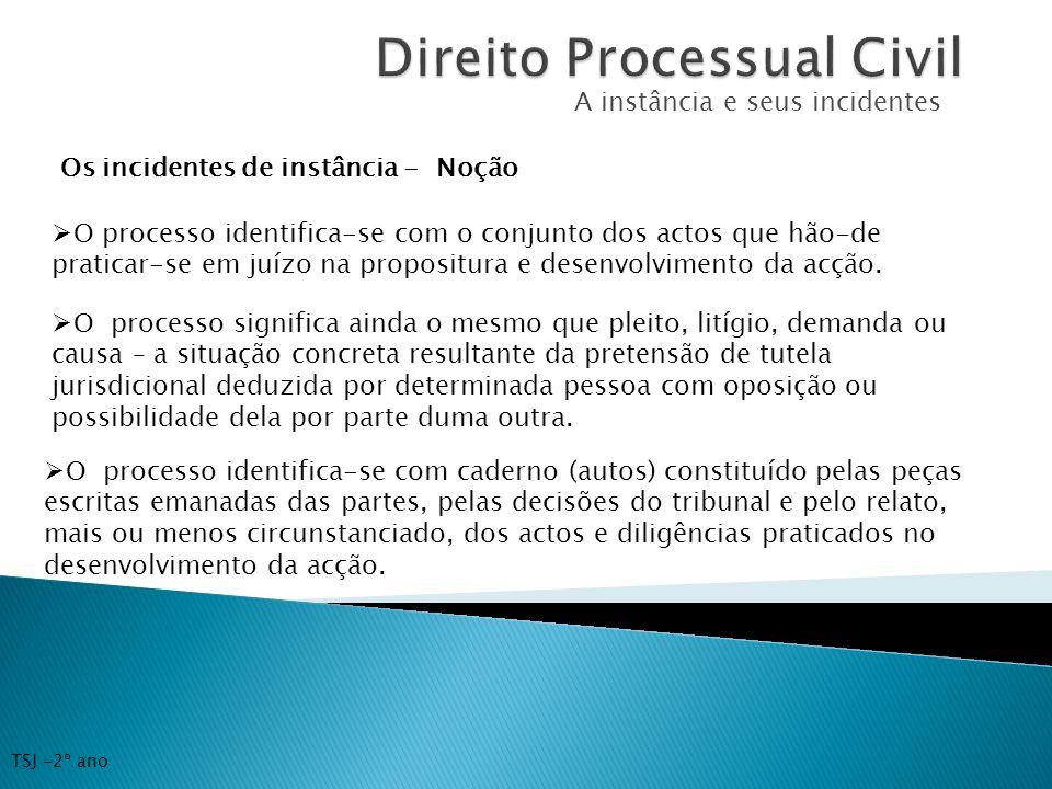 A instância e seus incidentes Os incidentes de instância - Noção O processo identifica-se com o conjunto dos actos que hão-de praticar-se em juízo na