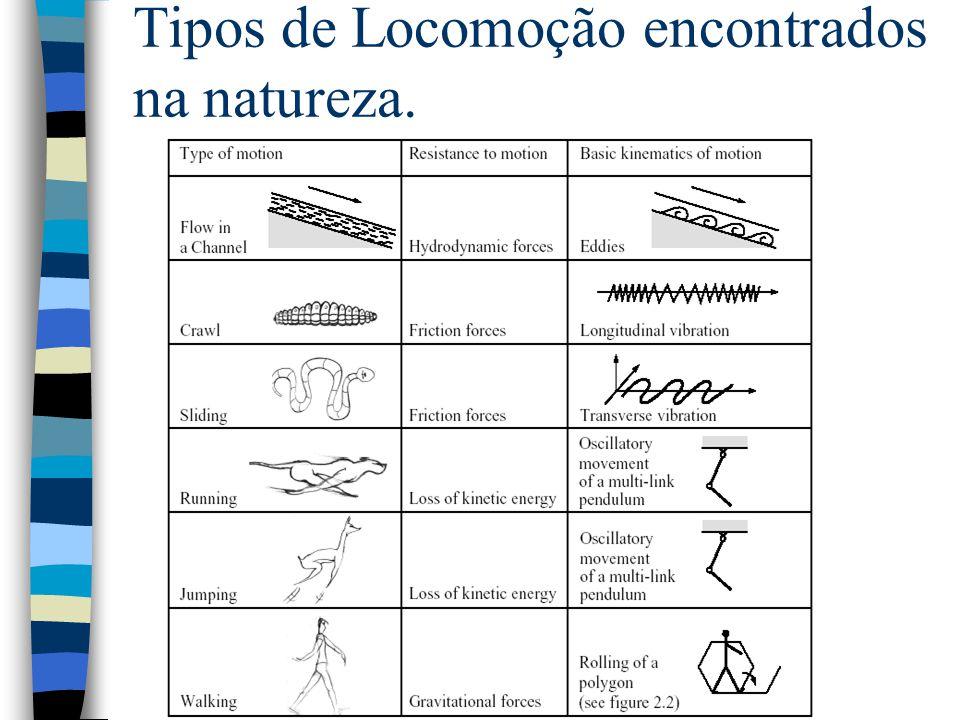 Tïpos de locomoção Conceitos encontrados na natureza: –Tecnicamente difíceis A maioria dos sistemas artificiais utilizam rodas ou lagartas.