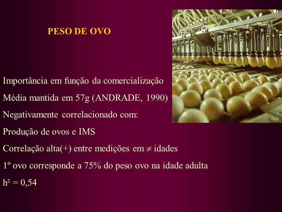 PESO DE OVO Importância em função da comercialização Média mantida em 57g (ANDRADE, 1990) Negativamente correlacionado com: Produção de ovos e IMS Correlação alta(+) entre medições em idades 1º ovo corresponde a 75% do peso ovo na idade adulta h² = 0,54