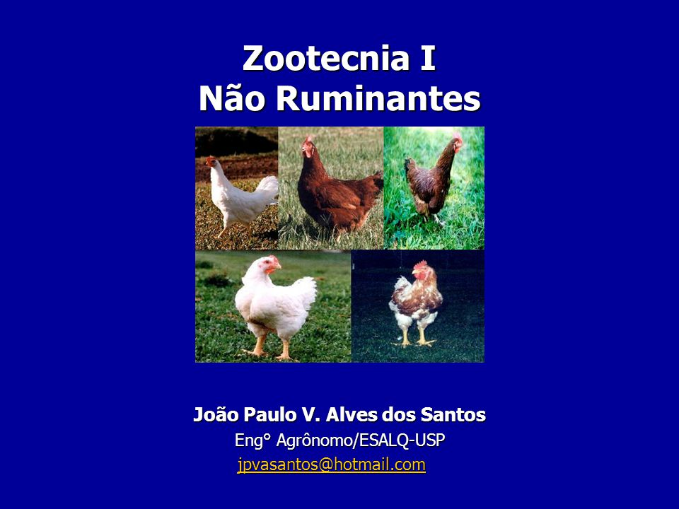 Zootecnia I Não Ruminantes João Paulo V. Alves dos Santos Eng° Agrônomo/ESALQ-USP jpvasantos@hotmail.com