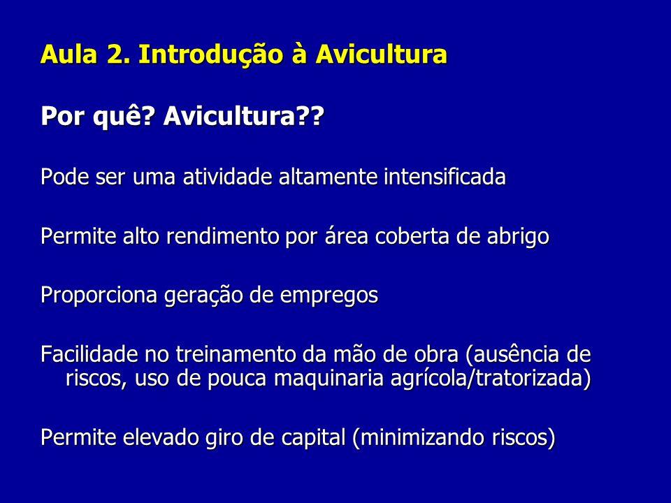 Aula 2. Introdução à Avicultura Por quê? Avicultura?? Pode ser uma atividade altamente intensificada Permite alto rendimento por área coberta de abrig