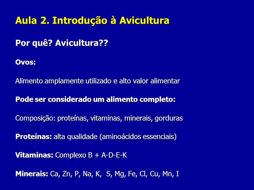 Aula 2. Introdução à Avicultura Por quê? Avicultura?? Ovos: Alimento amplamente utilizado e alto valor alimentar Pode ser considerado um alimento comp