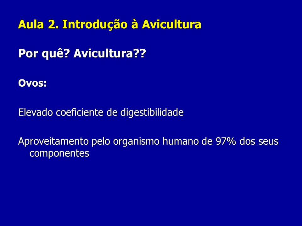 Aula 2. Introdução à Avicultura Por quê? Avicultura?? Ovos: Elevado coeficiente de digestibilidade Aproveitamento pelo organismo humano de 97% dos seu