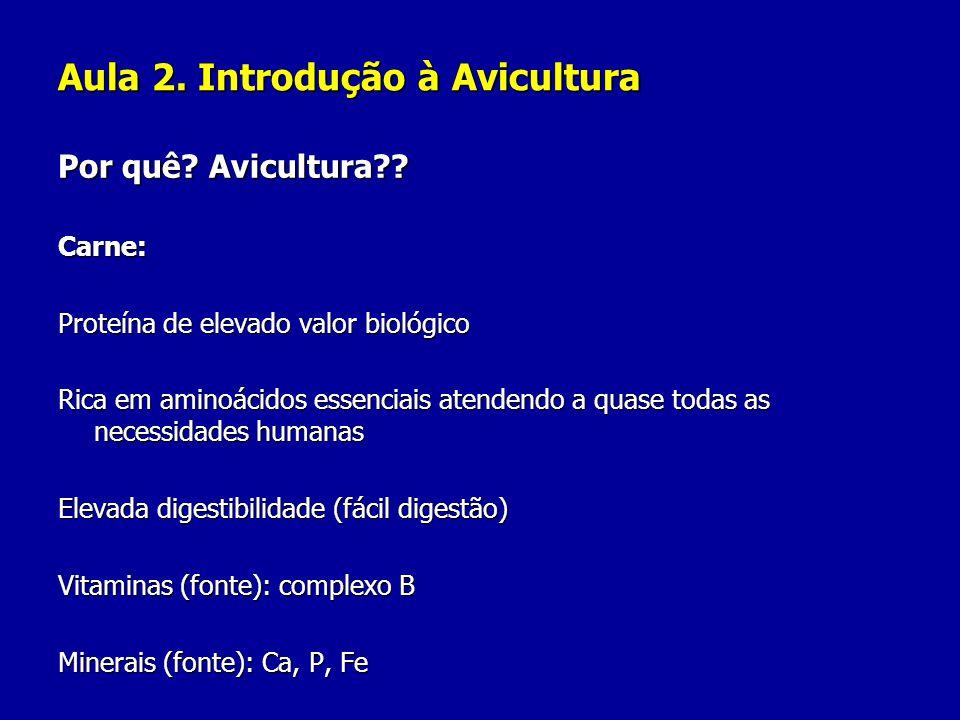 Aula 2. Introdução à Avicultura Por quê? Avicultura?? Carne: Proteína de elevado valor biológico Rica em aminoácidos essenciais atendendo a quase toda