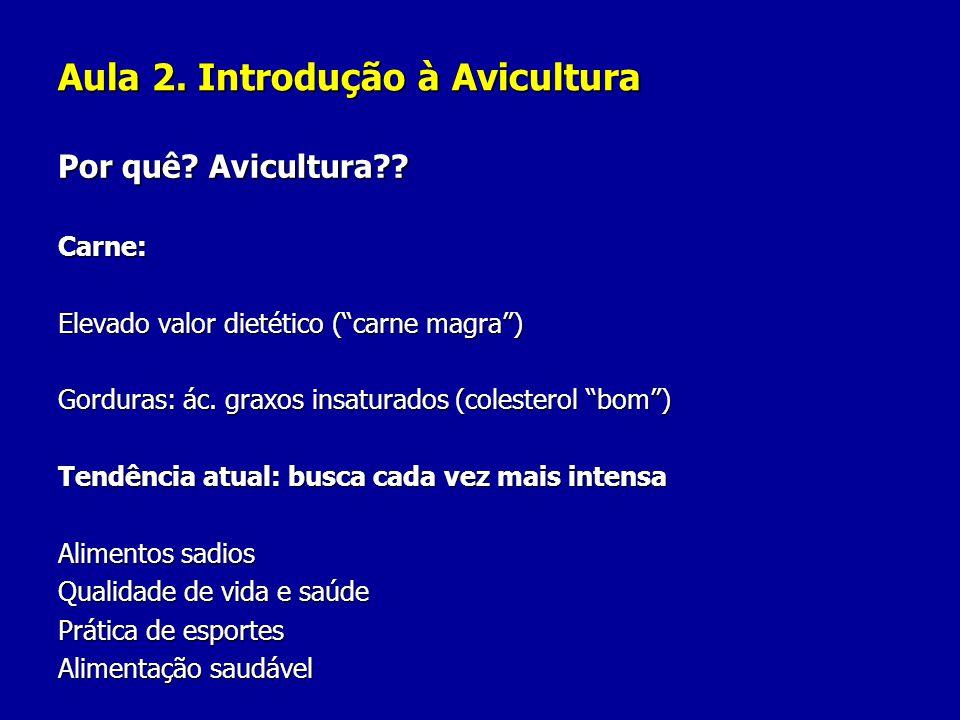 Aula 2. Introdução à Avicultura Por quê? Avicultura?? Carne: Elevado valor dietético (carne magra) Gorduras: ác. graxos insaturados (colesterol bom) T