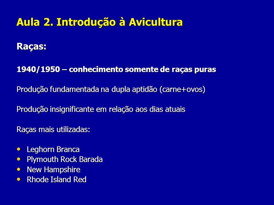 Aula 2. Introdução à Avicultura Raças: 1940/1950 – conhecimento somente de raças puras Produção fundamentada na dupla aptidão (carne+ovos) Produção in