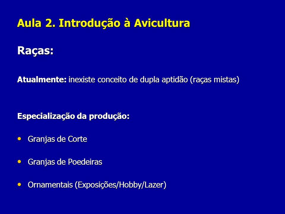 Aula 2. Introdução à Avicultura Raças: Atualmente: inexiste conceito de dupla aptidão (raças mistas) Especialização da produção: Granjas de Corte Gran