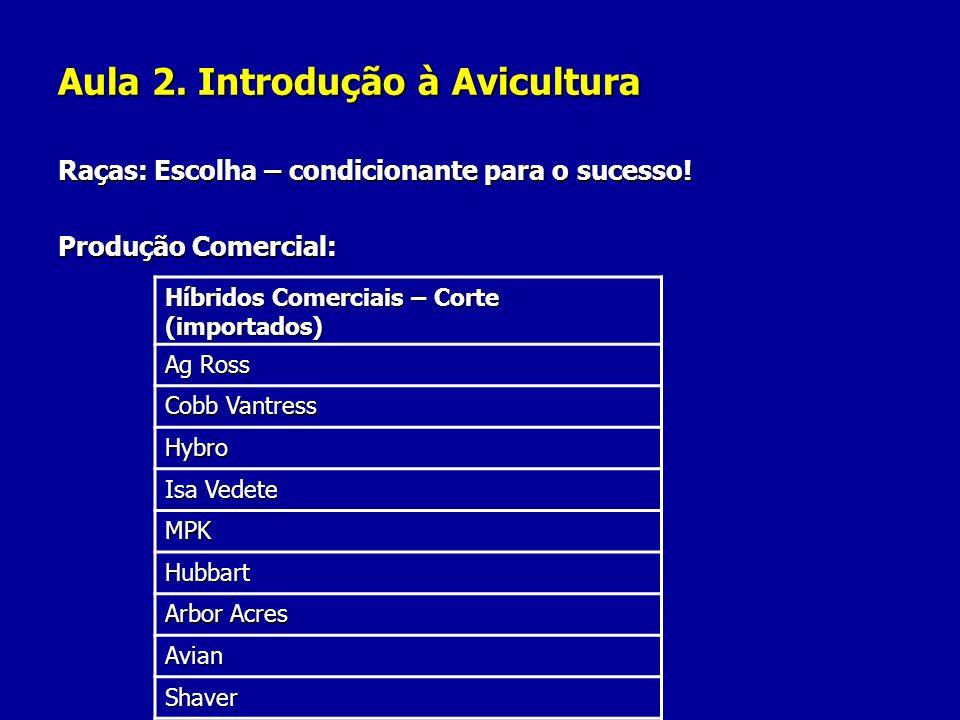 Aula 2. Introdução à Avicultura Raças: Escolha – condicionante para o sucesso! Produção Comercial: Híbridos Comerciais – Corte (importados) Ag Ross Co