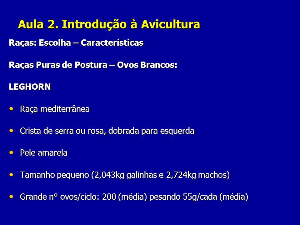 Aula 2. Introdução à Avicultura Raças: Escolha – Características Raças Puras de Postura – Ovos Brancos: LEGHORN Raça mediterrânea Raça mediterrânea Cr