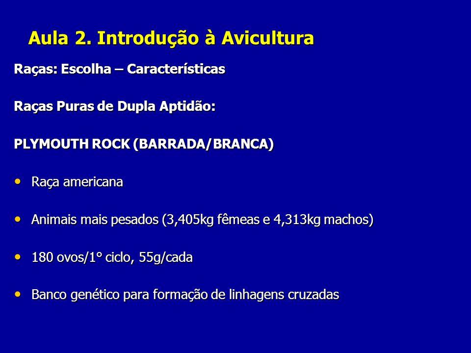 Aula 2. Introdução à Avicultura Raças: Escolha – Características Raças Puras de Dupla Aptidão: PLYMOUTH ROCK (BARRADA/BRANCA) Raça americana Raça amer