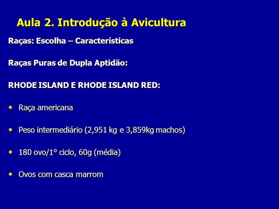 Aula 2. Introdução à Avicultura Raças: Escolha – Características Raças Puras de Dupla Aptidão: RHODE ISLAND E RHODE ISLAND RED: Raça americana Raça am