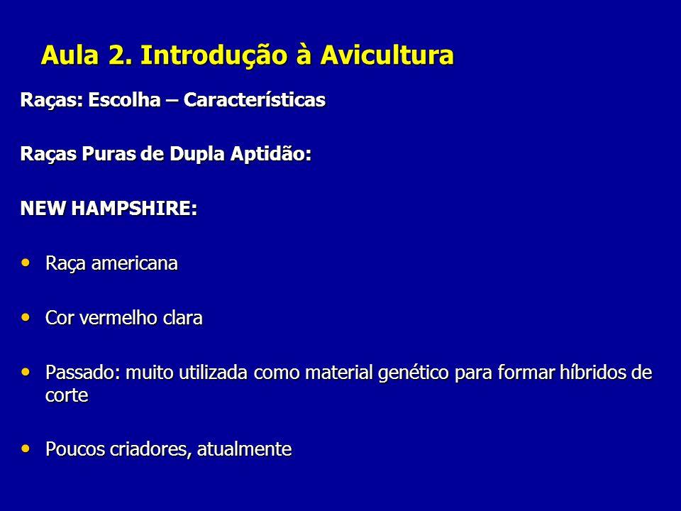 Aula 2. Introdução à Avicultura Raças: Escolha – Características Raças Puras de Dupla Aptidão: NEW HAMPSHIRE: Raça americana Raça americana Cor vermel