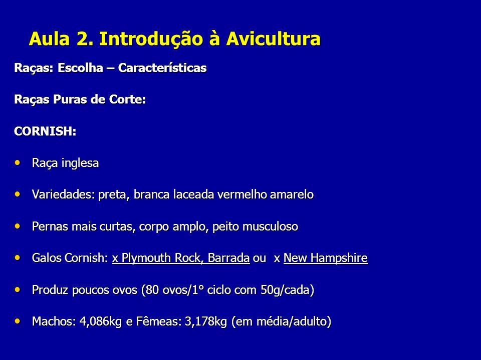 Aula 2. Introdução à Avicultura Raças: Escolha – Características Raças Puras de Corte: CORNISH: Raça inglesa Raça inglesa Variedades: preta, branca la