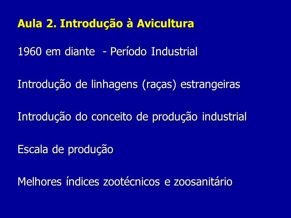 Aula 2. Introdução à Avicultura 1960 em diante - Período Industrial Introdução de linhagens (raças) estrangeiras Introdução do conceito de produção in