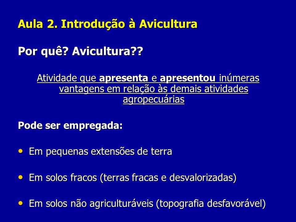 Aula 2. Introdução à Avicultura Por quê? Avicultura?? Atividade que apresenta e apresentou inúmeras vantagens em relação às demais atividades agropecu