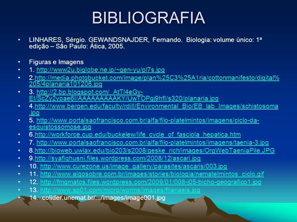 BIBLIOGRAFIA LINHARES, Sérgio.GEWANDSNAJDER, Fernando.