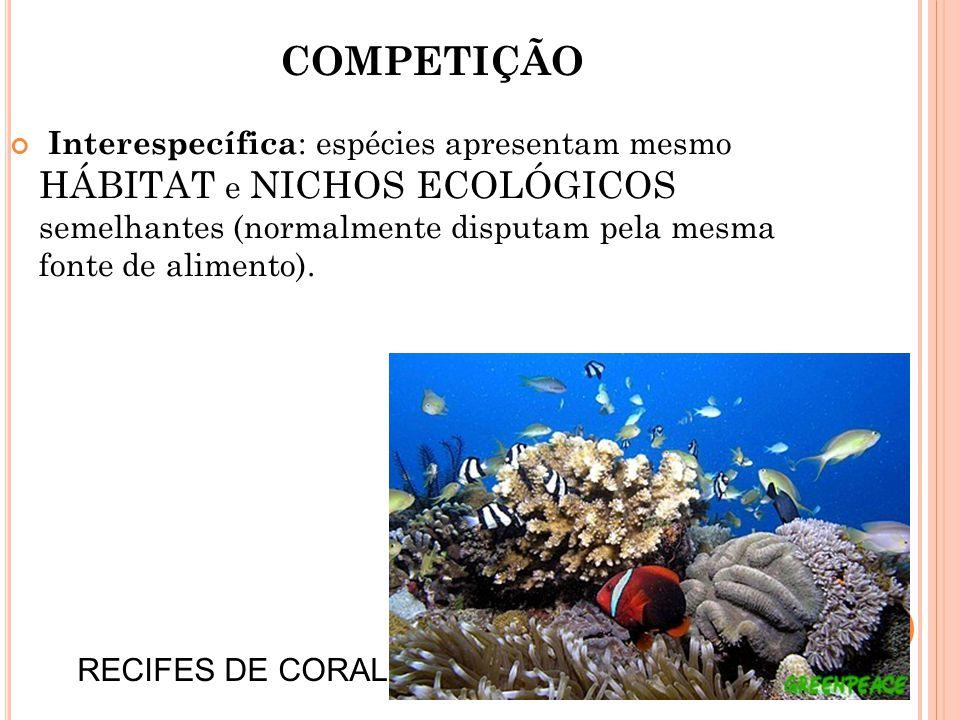 COMPETIÇÃO Interespecífica : espécies apresentam mesmo HÁBITAT e NICHOS ECOLÓGICOS semelhantes (normalmente disputam pela mesma fonte de alimento).