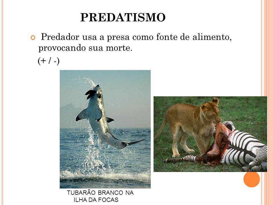 PREDATISMO Predador usa a presa como fonte de alimento, provocando sua morte.