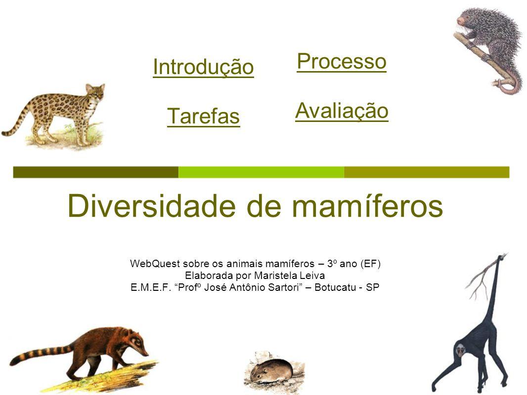 Introdução Tarefas Diversidade de mamíferos WebQuest sobre os animais mamíferos – 3º ano (EF) Elaborada por Maristela Leiva E.M.E.F. Profº José Antôni