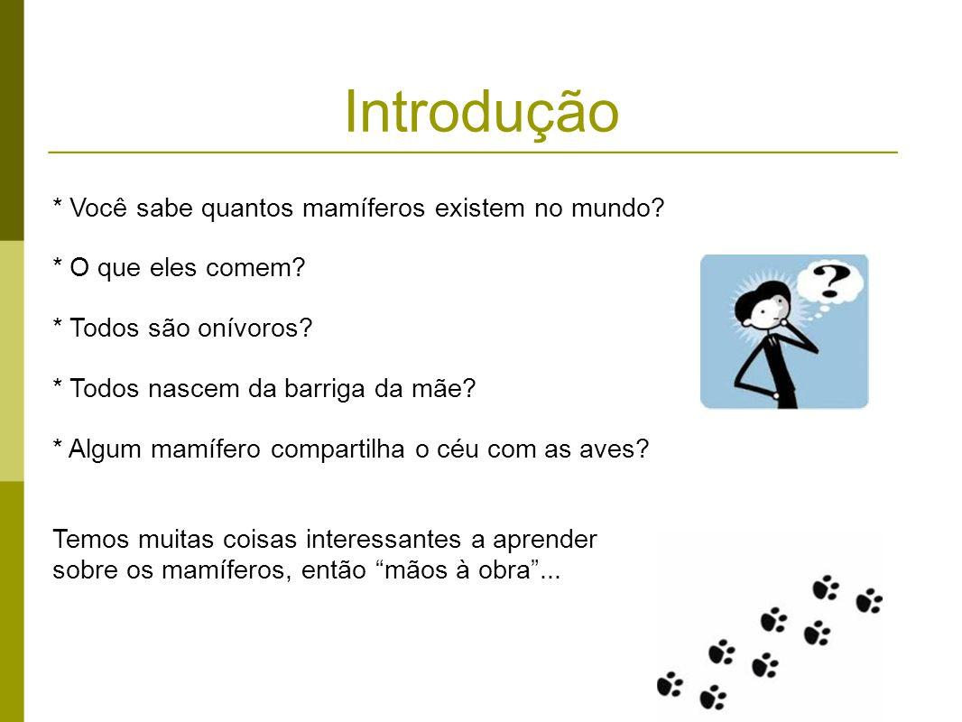 Introdução * Você sabe quantos mamíferos existem no mundo? * O que eles comem? * Todos são onívoros? * Todos nascem da barriga da mãe? * Algum mamífer