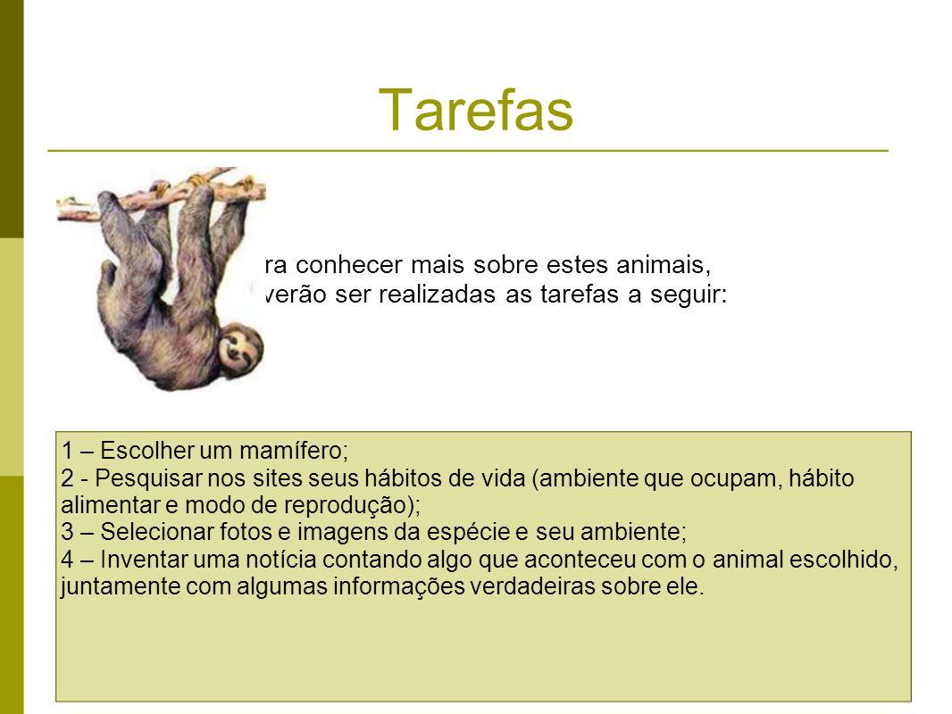 Tarefas Para conhecer mais sobre estes animais, deverão ser realizadas as tarefas a seguir: 1 – Escolher um mamífero; 2 - Pesquisar nos sites seus háb