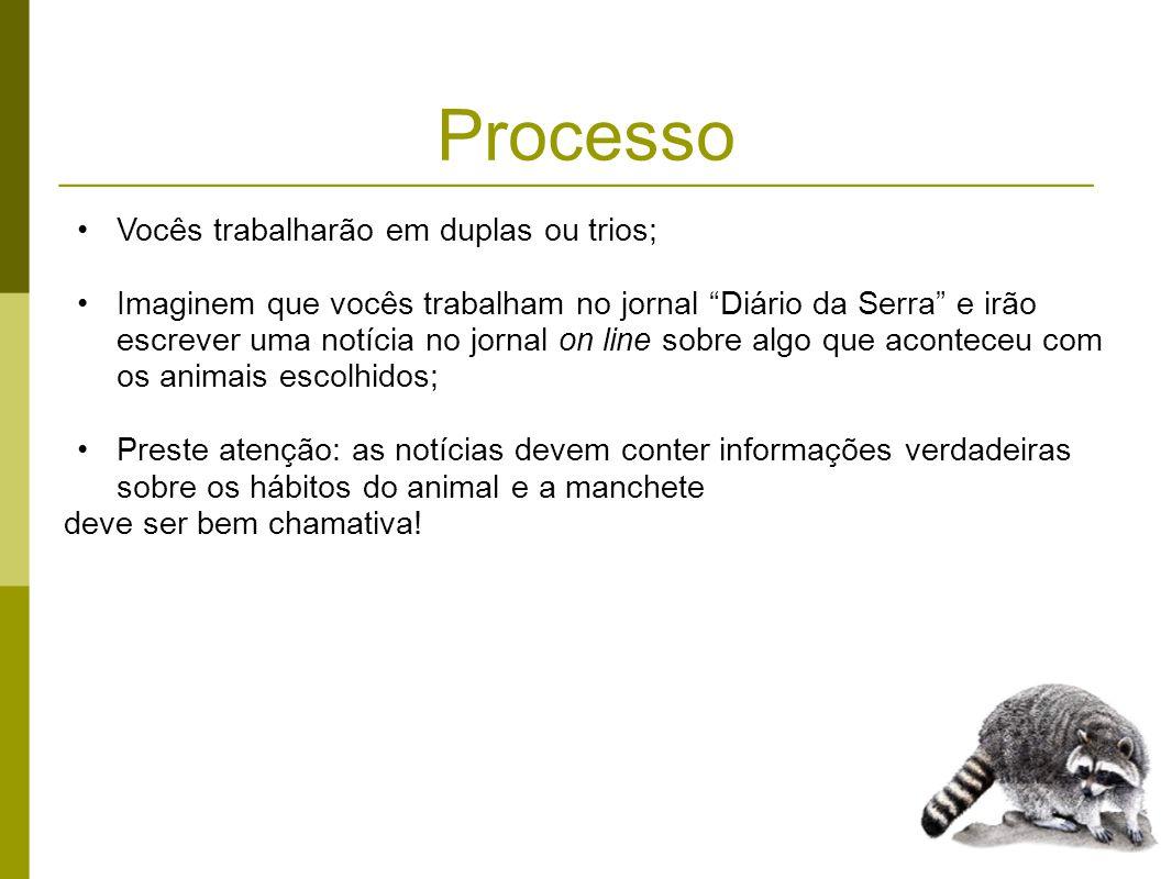 Processo Vocês devem pesquisar informações nos seguintes sites: http://pt.wikipedia.org/wiki/Mam%C3%ADferos http://www.zoologico.sp.gov.br/mamiferos.htm http://www.saudeanimal.com.br/zoo_m.htm http://www.saudeanimal.com.br/felinos.htm http://www.saudeanimal.com.br/primatas.htm http://www.procarnivoros.org.br/2009/animais.asp http://www.portalsaofrancisco.com.br/alfa/capas/animais/animais.php