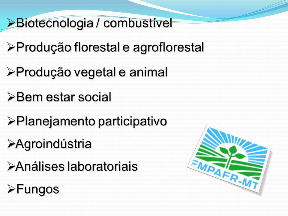Biotecnologia / combustível Biotecnologia / combustível Produção florestal e agroflorestal Produção florestal e agroflorestal Produção vegetal e anima