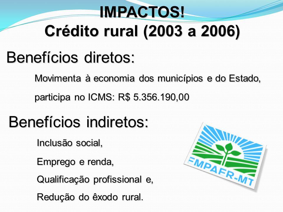 IMPACTOS! Crédito rural (2003 a 2006) Benefícios diretos: Movimenta à economia dos municípios e do Estado, participa no ICMS: R$ 5.356.190,00 Benefíci